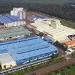 KCN Long Khánh và Dầu Giây: Đóng góp lớn vào hiệu quả SXKD của TCT cao su Đồng Nai