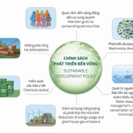 8 mục tiêu phát triển bền vững trong năm 2019