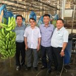 Cao su Dầu Tiếng quy hoạch hơn 2.100 ha phát triển nông nghiệp công nghệ cao