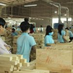 Mời tham gia chia sẻ trực tuyến: Tổng quan về FSC(R) - Chứng nhận nguồn gốc gỗ bền vững