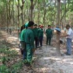 Cần cơ chế hỗ trợ người lao động làm việc ở Lào, Campuchia