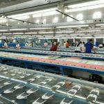 Bình Dương - Điểm hấp dẫn để VRG đẩy mạnh đầu tư khu công nghiệp