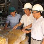 Cao su Quảng Trị chế biến hơn 200 tấn sản phẩm thương hiệu VRG