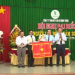 Cao su Bình Thuận: Thu nhập người lao động tăng