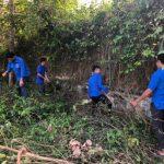 Đoàn Thanh niên Cao su Dầu Tiếng: Ra quân Ngày Chủ nhật xanh