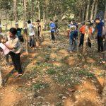Cao su Lai Châu: Đào tạo công nhân mới