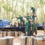 Luôn gắn chặt lợi ích người lao động với lợi ích vườn cây