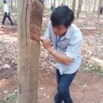 Lê Kim Phú: Nỗ lực học hỏi, hoàn thành tốt nhiệm vụ