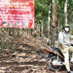 Bám trụ vườn cây, tuyên truyền phòng chống dịch