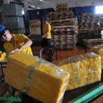 Xuất khẩu cao su dự báo vẫn gặp khó trong ngắn hạn
