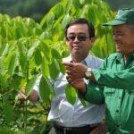 Cao su Đồng Nai: Phát triển gắn liền với mục tiêu Doanh nghiệp - xã hội - môi trường