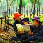 Chặng đường 91 năm báo chí cách mạng ngành cao su Việt Nam