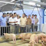 Phó Chủ tịch Quốc hội tham quan mô hình chăn nuôi 4F của Quế Lâm