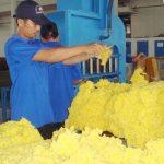 Việt Nam cung cấp cao su lớn thứ 2 cho Trung Quốc