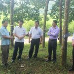 Cao su Điện Biên: Đề xuất tháo gỡ khó khăn cho doanh nghiệp