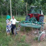 Cao su Tây Ninh ứng dụng cơ giới hóa trong tái canh trồng mới