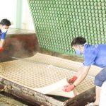 Sản xuất gối nệm từ cao su thiên nhiên tại nhà máy Dorufoam