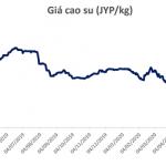 BSC: Giá cao su phục hồi chỉ diễn ra trong ngắn hạn