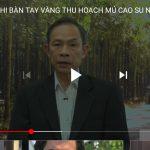 Chủ tịch HĐQT VRG chia sẻ về Hội thi Bàn tay vàng