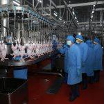 Nông nghiệp Việt Nam quyết làm ăn lớn