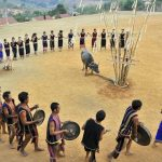 Lễ hội ăn trâu: Nét văn hóa độc đáo của đồng bào dân tộc thiểu số Tây Nguyên