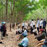 Tích cực hỗ trợ các đơn vị khi dịch Covid-19 bùng phát mạnh tại Campuchia