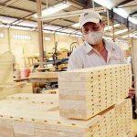 Một hiện tượng hiếm có, thế mạnh Việt chốt số 15,5 tỷ USD