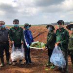 Đoàn Thanh niên Cao su Đồng Nai tình nguyện hỗ trợ công nhân mùa tái canh