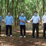 Cao su Bình Long: Phát hiện, phối hợp bắt giữ 4 người nước ngoài xâm nhập trái phép