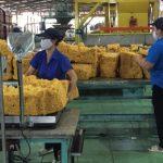 Các công ty Đông Nam bộ có kết quả sản xuất kinh doanh tốt, thu nhập ổn định