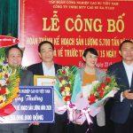 Cao su Ea H'Leo dẫn đầu tỷ lệ khai thác 8 tháng đầu năm khu vực Tây Nguyên
