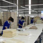 Các khu công nghiệp VRG: Tích cực hỗ trợ doanh nghiệp phòng chống dịch, sản xuất tốt