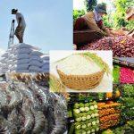 Gỡ khó, phục hồi xuất khẩu nông - thủy sản