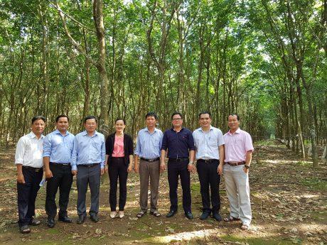 Đoàn công tác thăm vườn cây NT Thuận Đức