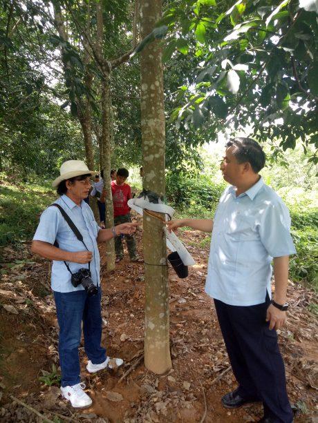 Ông Phạm Trung Thái – Chủ tịch HĐQT Cao su Nghệ An trao đổi với nhà báo trong ngày ra quân đầu năm