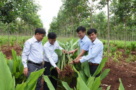 Ông Võ Sỹ Lực – Nguyên Chủ tịch HĐTV VRG (thứ ba từ trái sang) tham gia thực hiện nghi thức khởi công xây Nhà Nhân ái do ĐTN VRG tài trợ tại thị xã Thái Hòa, tỉnh Nghệ An. Ảnh: Đào Phong