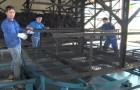 Xí nghiệp Chế biến K'Dang cải tiến nâng cao hiệu quả sản xuất