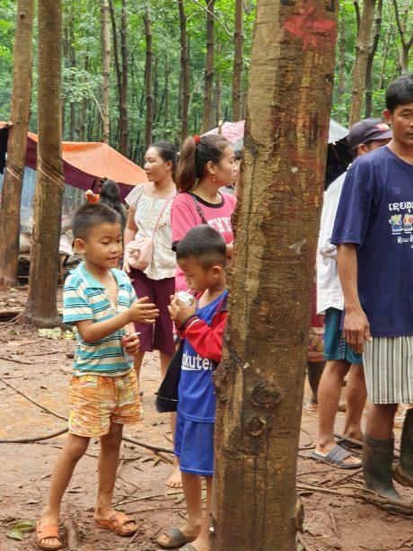 Chia nhau từng hộp sữa tại bản Phuthonglum