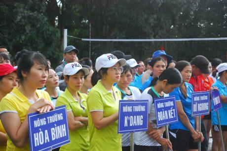 Các đội về tham gia giải