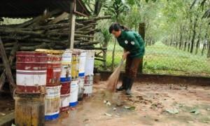 Dọn dẹp vệ sinh phòng chống dịch SXH tại NT Ia Tiêm – Cao su Chư Sê