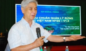 Giáo sư, TSKH Nguyễn Ngọc Lung phát biểu tại một hội thảo phổ biến kiến thức quản lý rừng bền vững, tháng 3/2019, tại Bình Định.