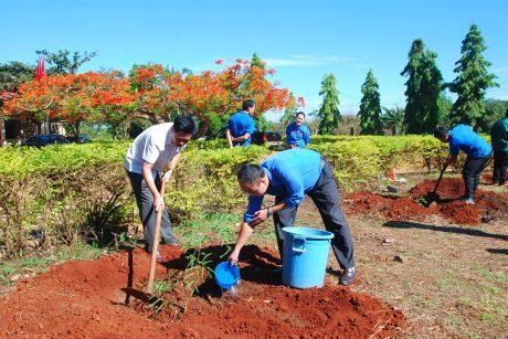 Anh Phan Hồ Giang - Phó Bí thư tỉnh đoàn và lãnh đạo Nông trường Ia Ko tham gia trồng cây cùng các đoàn viên