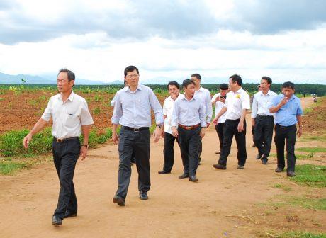 ãnh đạo VRG kiểm tra công tác tái canh 209 ha tại NT Ya Chim – Công ty TNHH MTV Cao su Kon Tum.
