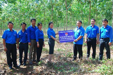 Trao bảng công trình vườn cây thanh niên cho đoàn cơ sở Nông trường Ia Ko quản lý, chăm sóc