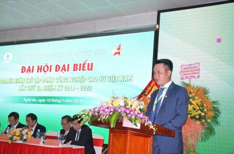 Anh Đặng Hồng Anh - Chủ tịch Hội DNT Việt Nam phát biểu tại hội nghị