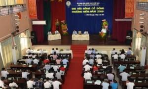 Đại hội cổ đông năm 2019 Công ty CPCS Phước Hòa. Ảnh: Vũ Phong.