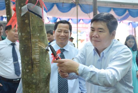 Phó Chủ tịch Công đoàn CSVN Võ Việt Tài thao tác cạo mủ tại lễ ra quân