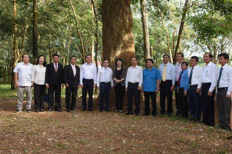 Đoàn công tác, lãnh đạo VRG, Công đoàn CSVN, lãnh đạo TCT chụp hình kỷ niệm tại vườn cây cao su bảo tồn