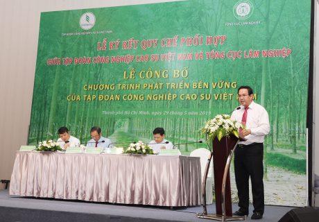 Ông Trương Minh Trung – Phó TGĐ, Phó Ban thường trực Ban Chỉ đạo PTBV VRG báo cáo Chương trình phát triển bền vững của VRG giai đoạn 2019 – 2024 và kế hoạch năm 2019