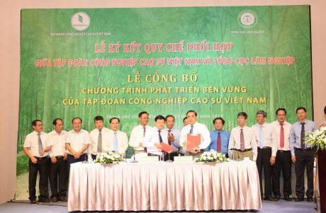 VRG và Tổng Cục Lâm nghiệp ký kết quy chế phối hợp về Quản lý rừng bền vững và Chứng chỉ rừng